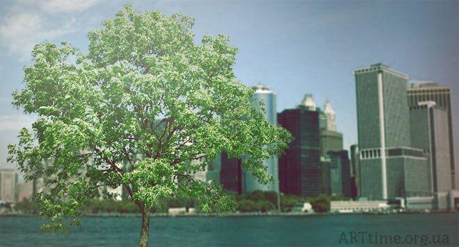 Дерево на островке