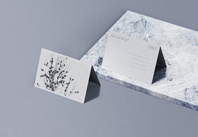 Folded Postcard Mockup